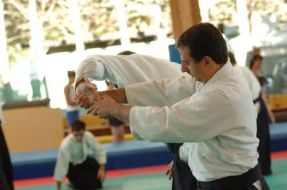 Aikido_instructor_low